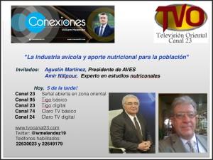 En conexiones canal 23