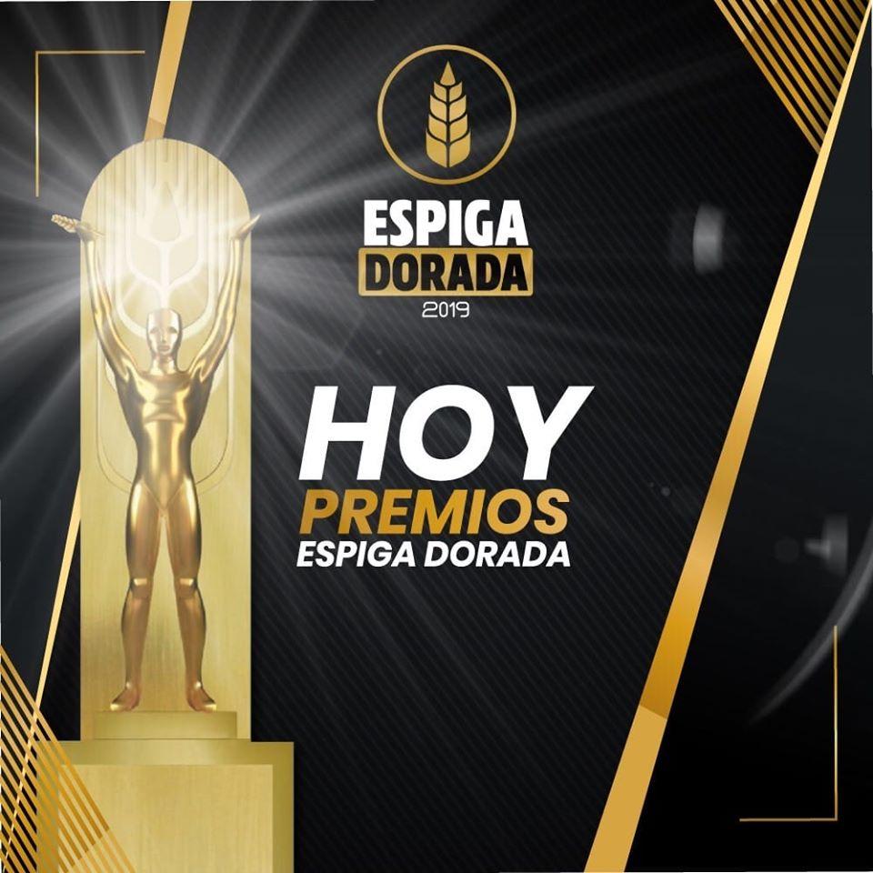 AVES Espiga Dorada 2019